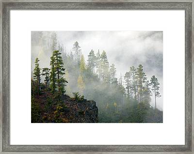 Autumn Mist Framed Print by Mike  Dawson