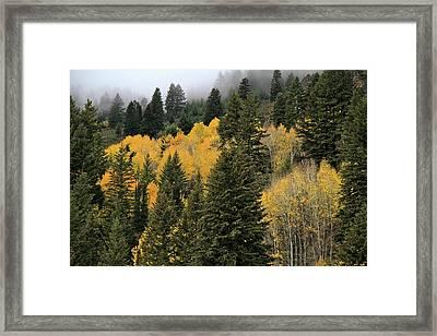 Autumn Mist, Owyhee Mountains Framed Print