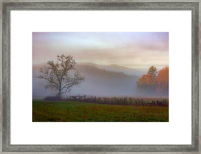 Autumn Mist Framed Print by Rick Berk