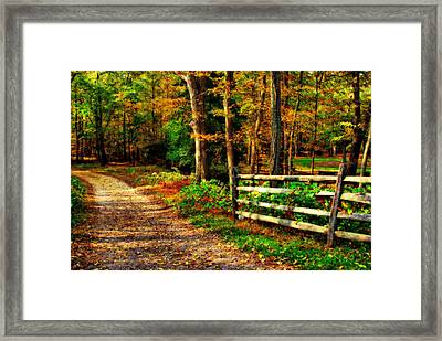 Autumn Moment - Allaire State Park Framed Print