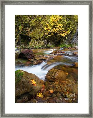 Framed Print featuring the photograph Autumn Moment by Mike Dawson
