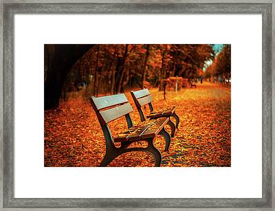 Autumn Moments Framed Print
