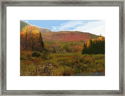 Autumn  Moose Bog Framed Print