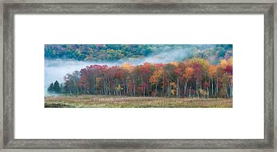 Autumn Morning Mist Framed Print