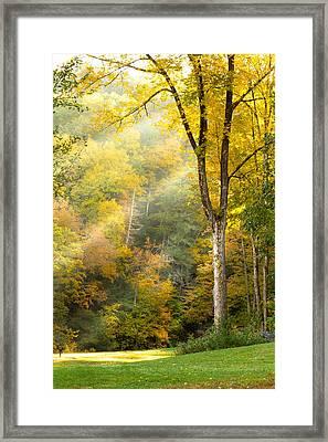 Autumn Morning Rays Framed Print