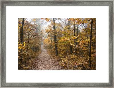 Autumn Morning Framed Print by Ricky Dean