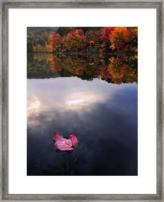 Autumn Mornings Iv Framed Print