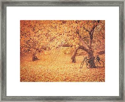Autumn - New York City Framed Print by Vivienne Gucwa