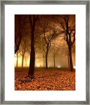 Autumn Framed Print by Niki Mastromonaco