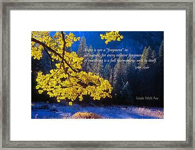 Autumn Oak Yosemite Poster Art Framed Print