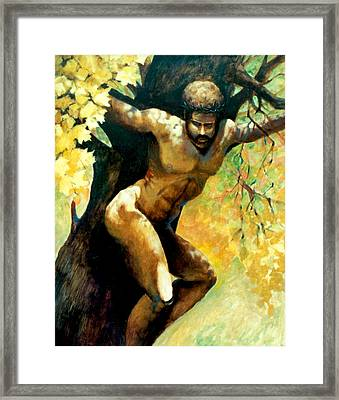 Autumn Of Life Framed Print by Dale  Witherow