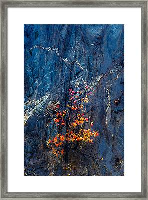 Autumn On A Rock Wall Framed Print by Joseph Smith