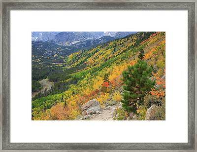 Autumn On Bierstadt Trail Framed Print