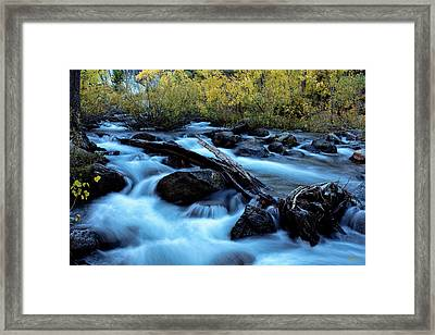 Framed Print featuring the photograph Autumn On Bishop Creek by Stuart Gordon
