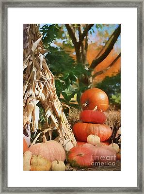 Autumn On Display Framed Print by Benanne Stiens