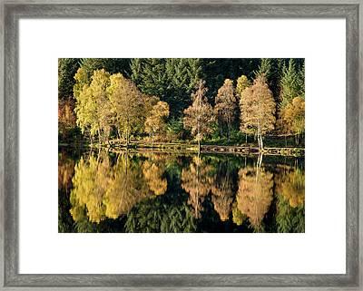 Autumn On Glencoe Lochan Framed Print