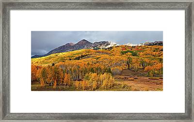 Framed Print featuring the photograph Autumn On Kebler Pass by Stuart Gordon