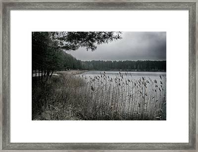 Autumn On Lake. Oleshnya, 2016. Framed Print