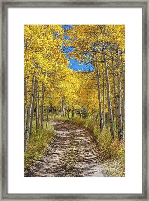 Autumn On Medano Pass Framed Print