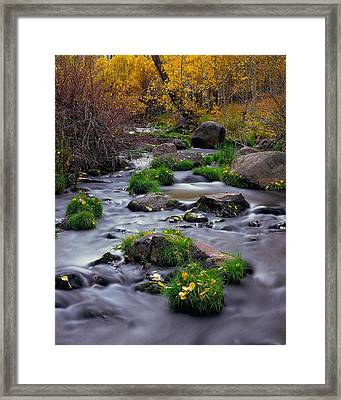 Autumn On Mill Creek Framed Print