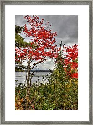 Framed Print featuring the photograph Autumn On Raquette Lake by David Patterson
