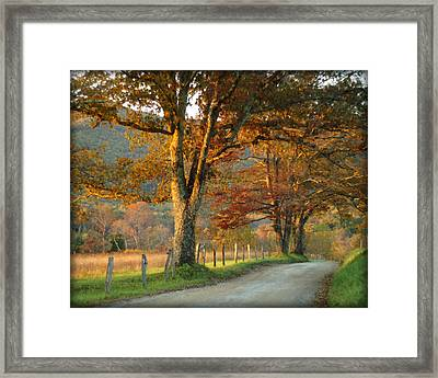 Autumn On Sparks Lane Framed Print