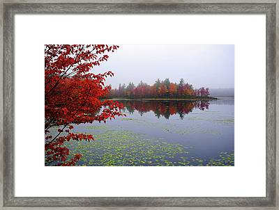 Autumn On The Bellamy Framed Print