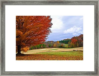 Framed Print featuring the photograph Autumn On The Golf Course by Susan Leggett