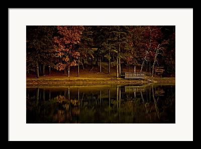 Tree Leaf On Water Digital Art Framed Prints