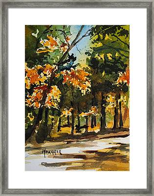 Autumn On The Natchez Trace Framed Print by Spencer Meagher