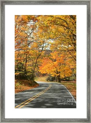 Autumn On The Parkway Framed Print