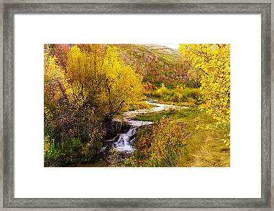 Autumn On The Provo Deer Creek Framed Print by TL  Mair