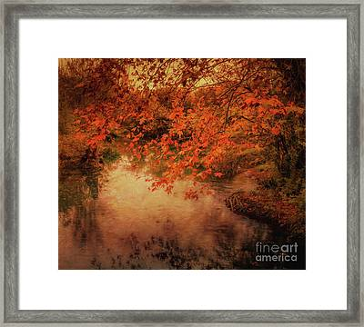 Autumn On The River Sorgue Framed Print by Robert Brown