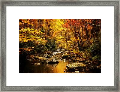 Autumn On The Tellico River Framed Print