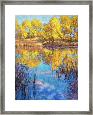 Autumn On Wetlands Framed Print