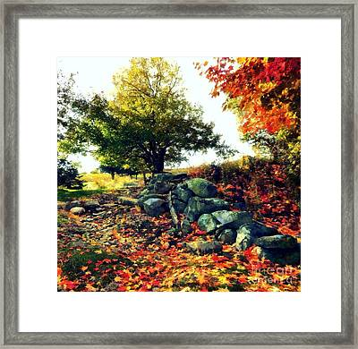 Autumn Orchard Framed Print by Janine Riley
