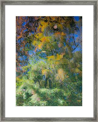 Autumn Painting Framed Print by Claus Siebenhaar