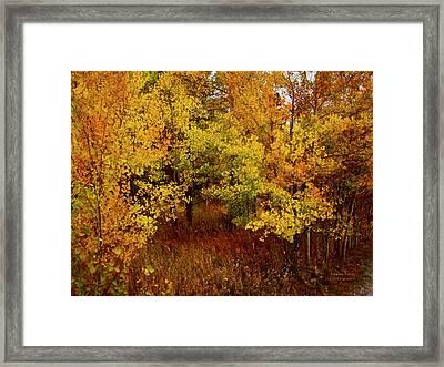 Autumn Palette Framed Print by Carol Cavalaris