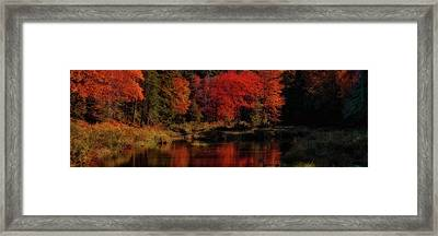 Autumn Panorama Framed Print by David Patterson