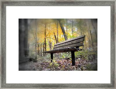 Autumn Park Bench Framed Print by Bonfire Photography