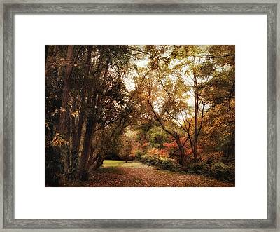 Autumn Passage Framed Print