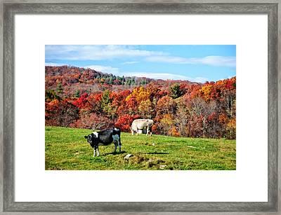 Autumn Pastures Framed Print by Lynn Bauer