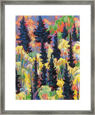Autumn Patchwork Framed Print by Phil Chadwick