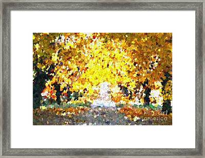 Autumn Path Framed Print by Don Phillips