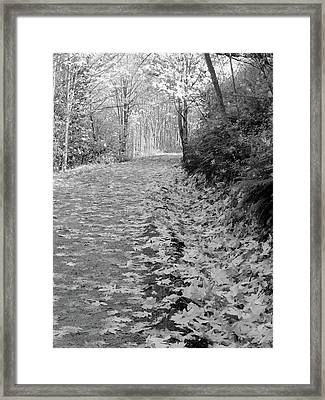 Autumn Path Framed Print
