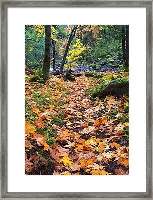 Autumn Path Framed Print by Mike  Dawson