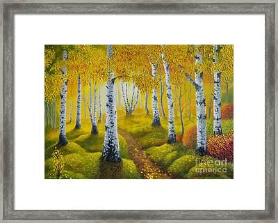 Autumn Path Framed Print by Veikko Suikkanen
