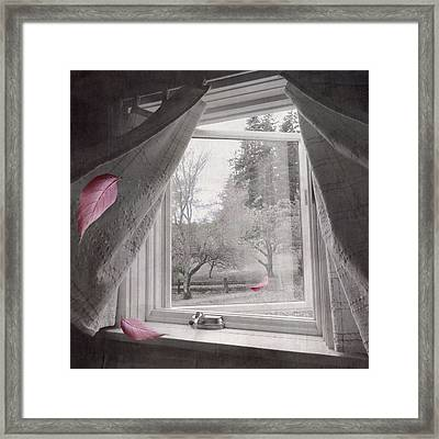 Framed Print featuring the photograph Autumn Pays A Visit by Sally Banfill