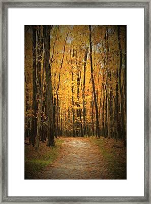 Autumn Peace Framed Print
