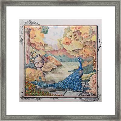 Autumn Peacock Framed Print by Joyce Hutchinson